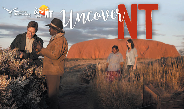 Uncover NT